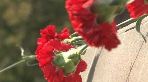 Родственников красноармейца, погибшего в 1943 году, разыскивают в Туле