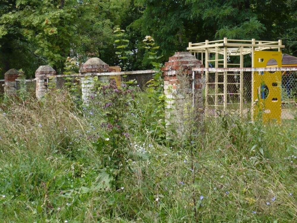Детский сад зарос травой